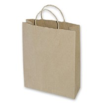 Small brown kraft paper carry bag
