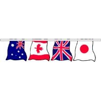 INternational Flag String