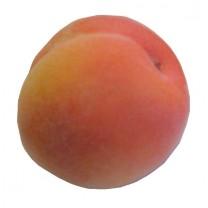 Artificial Peach